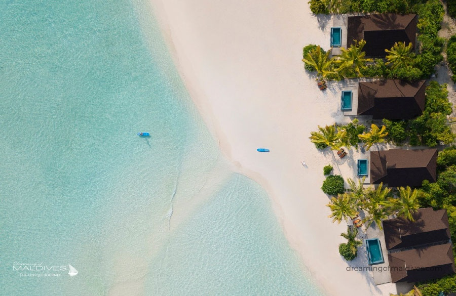 Carpe Diem Beach Resort and Spa Opening Date : November 2018