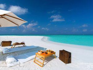Wanna go for a Picnic on The Beach
