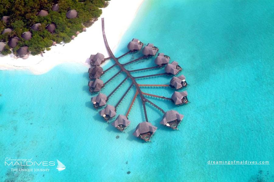 Coco Palm Dhuni Kolhu Maldives Resort Aerial Photo