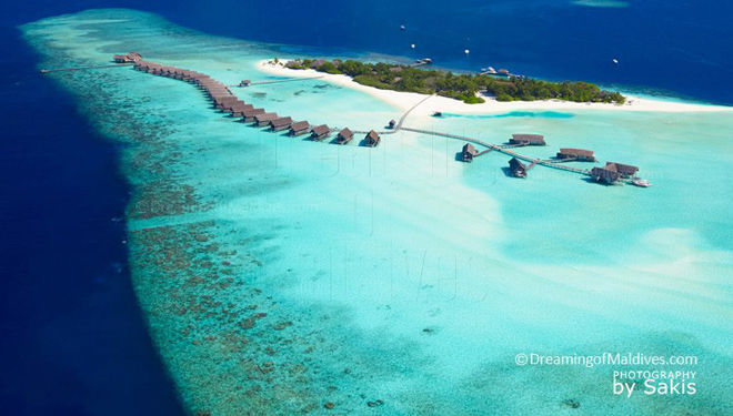 Cocoa Island | Dreaming of Maldives - The Blog. The first Maldives Photo  Blog