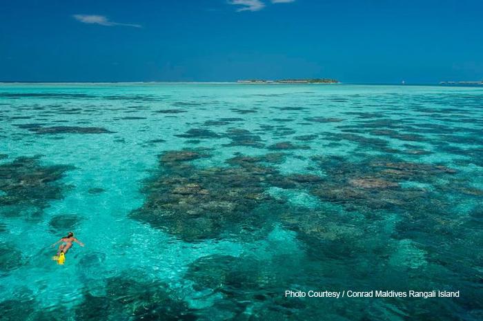 Swimming in the blue at Conrad Maldives Rangali Island. Michael Phelps holidays