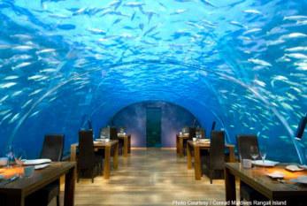 #Conrad Maldives Rangali Island