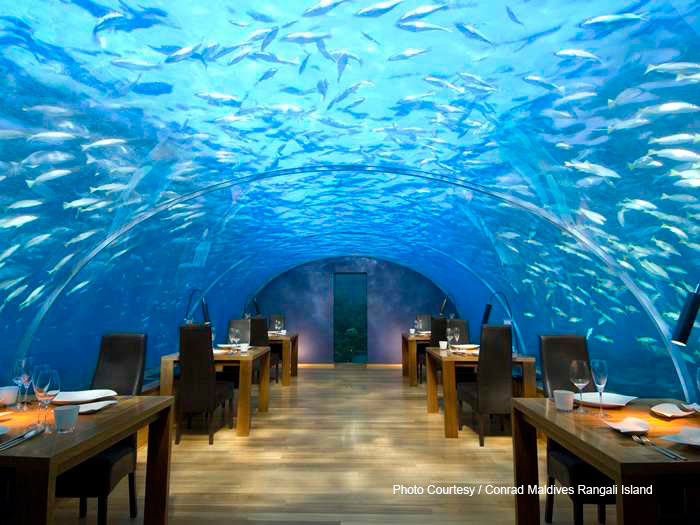 Conrad Maldives Rangali Island . Ithaa Underwater restaurant