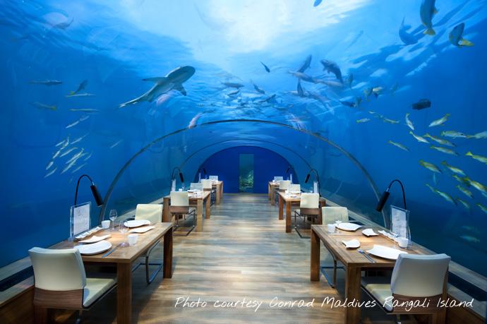 Conrad Maldives Rangali Island underwater restaurant Most Beautiful Restaurant in the World