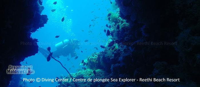 Diving in Baa Atoll - Reethi Beach Resort Maldives