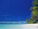 Dreaming of Maldives The Unique Guide to the Maldives Islands