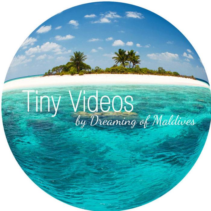 The Maldives Tiny Daily Video