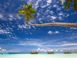 Gili Lankanfushi Maldives Dreamy Resort