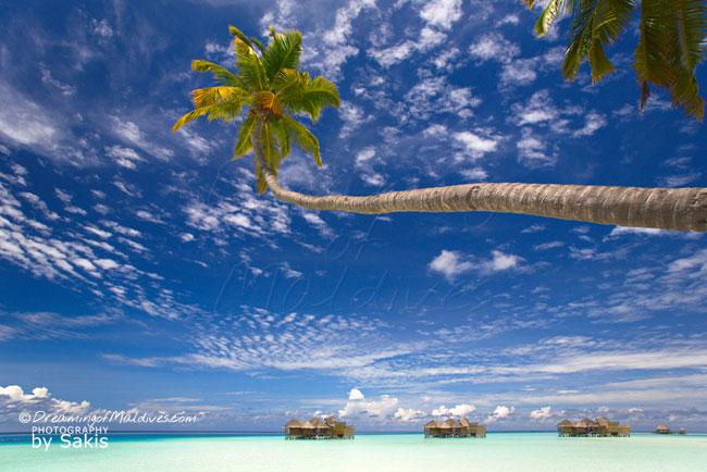 Gili Lankanfushi Maldives - 2013 World Travel Awards Indian Ocean's Leading Luxury Resort AND Maldives' Leading Luxury Resort