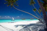 Gili Lankanfushi Maldives (Discover Gili Lankanfushi Maldives in a unique Gallery of 48 beautiful Photos)