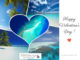 Happy Valentine's Day ! Focus on LOVE