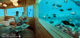 underwater Spa at Huvafen Fushi
