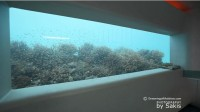 Huvafen Fushi Underwater Spa Video