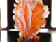 Joali Coral Glass object by Fy-shan Glass Studio