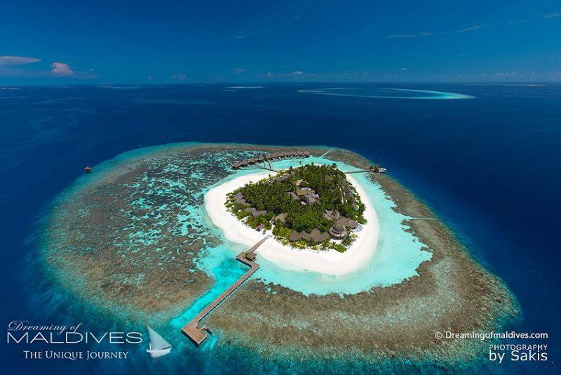 Kandolhu Maldives - Best Resort for snorkeling House Reef everywhere around the Island