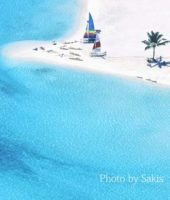 Photo of the day : Resort aerial view