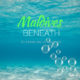 See Beneath Maldives Resorts. A Diving & Snorkeling New Experience