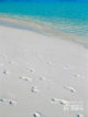 Let maldives beaches unspoiled. One of the many rules to respect