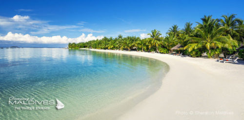 Maldives family hotel for family holidays sheraton full moon