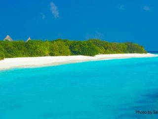 To live happy, live hidden in Maldives Photo of the day