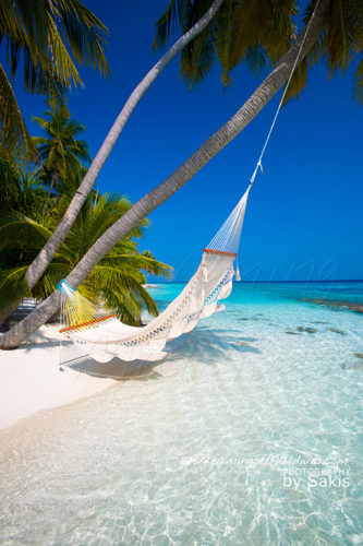 Paradise Beach of The Maldives Islands