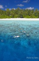 Photo of the day Snorkeling at Filitheyo Resort Maldives