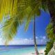 Photo hammock in Maldives
