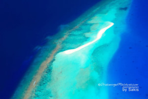 Photo of The Day : A Quick Fact about Maldives Sandbanks and other Maldives Marvels...