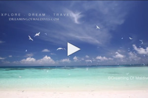 Tiny Maldives Video. Paradise In Slow Motion.