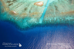 Maldives spectacular Reefs for snorkeling Aerial View