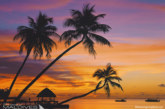 Maldives Sunset Photo Gallery