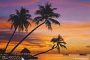 Maldives Sunset Photo Gallery