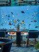 Wonderful Underwater Structures In Maldives