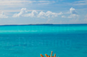 Maldives Resort   View from a Water Villa Terrace at Island Hideaway Maldives