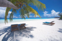 Photo of the Day : Maldives. Under the Shade of a Coconut Palm
