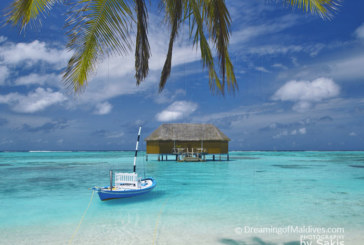 Diving and Snorkeling at Meeru Island Resort, North Male Atoll. Interview with Ingrid, Dive Center Manager