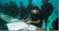 Maldives cabinet makes a splash