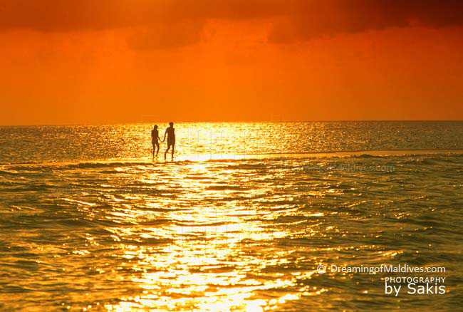 Maldives Photo of the Day : Walking on a sandbank at Sunset. A simple but yet Magic moment that can happen only in Maldives