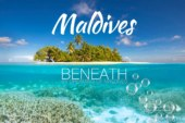 See Beneath Maldives Underwater World