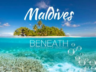 see beneath maldives snorkeling diving Underwater