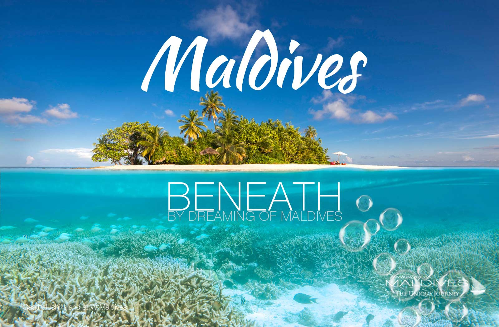 see beneath maldives snorkeling diving Underwater