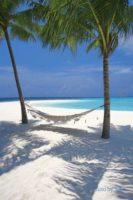 Unique Maldives ….