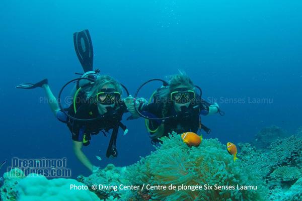Diving at Six Senses Laamu - Laamu Atoll Maldives