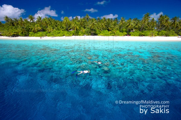 Snorkeling on the fabulous House reef of Filitheyo Island Resort Maldives