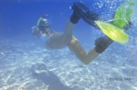 Where To Snorkel in The Maldives – Everywhere!!