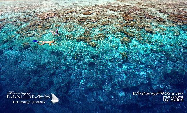 Maldives Snorkeling - Best resorts