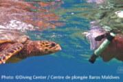 Maldives Underwater Photo Gallery