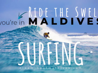 surfing in the Maldives. A complete Guide for traveling surfers plus photos of Maldives Waves