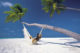Things To Do In Maldives. Chill in a Hammock and Watch the World Go By
