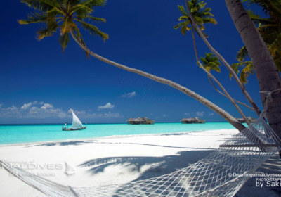 Things To Do In Maldives. Take Amazing Photos